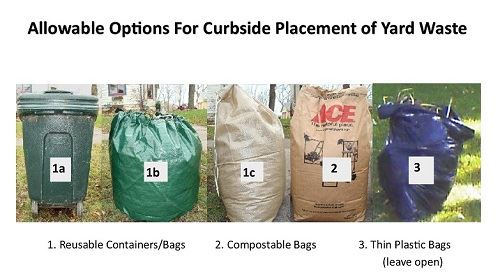 WebsiteYardwasteBagPhoto_edited
